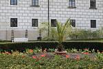 Ve městě kvetou tulipány, narcisky, pampelišky a mnoho dalšího.