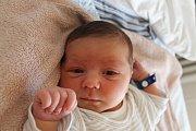 David Maňour se narodil 26. dubna Michaele Svobodové a Davidu Maňourovi z J. Hradce. Měřil 51 centimetrů a vážil 3870 gramů.
