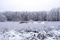Zima okolo rybníka.
