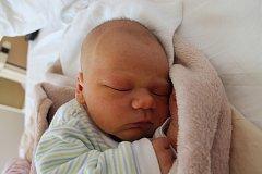 Zdeněk Pravenec se narodil 23. února Andree Hořejší a Zdeňku Pravencovi z Deštné. Měřil 52 centimetrů a vážil 3690 gramů.