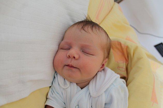 Patricie Kryzanová se narodila 21. září Vendule Zdychyncové a Lubomíru Kryzanovi ze Slavonic. Měřila 50 centimetrů a vážila 3500 gramů.