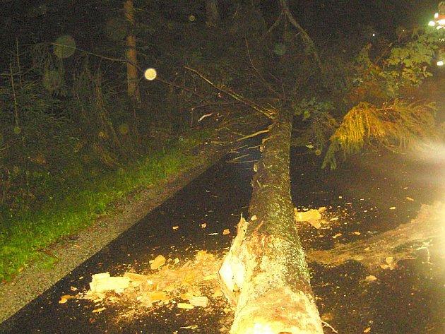 Na Jindřichohradecko se opět vrátila bouřka a padaly stromy.