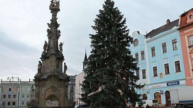 Vánoční strom v Jindřichově Hradci.