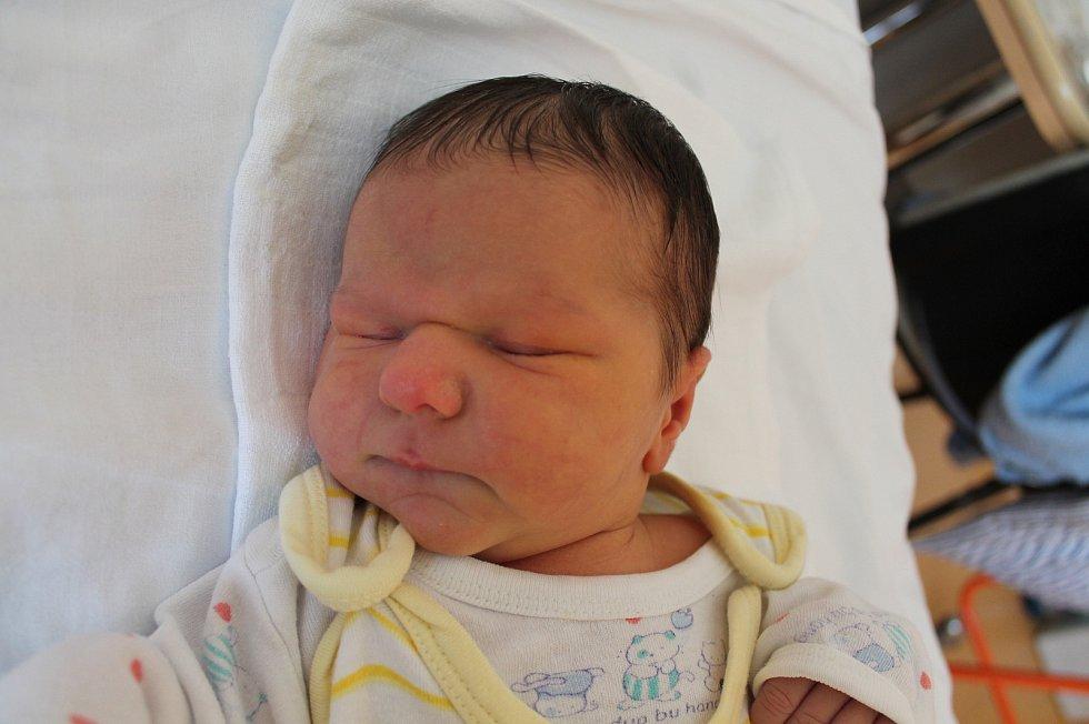Tereza Tomková se narodila 10. listopadu Jindřišce a Pavlu Tomkovým z Jindřichova Hradce. Měřila 53 centimetrů a vážila 3700 gramů.
