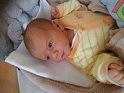 Richard Jirků, Žirovnice.Narodil se 24. listopadu Janě Jirků a Richardu Luskovi,vážil 3 602 gramů a měřil 52 centimetrů.