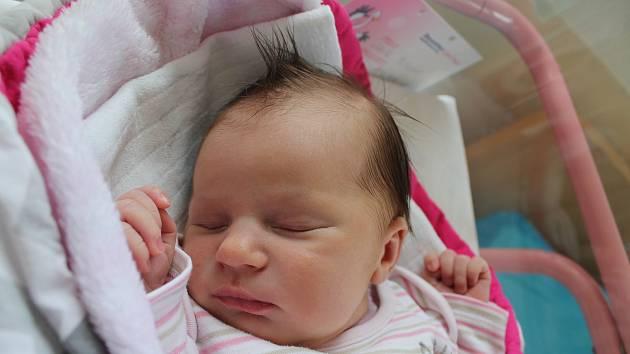 Julie Plachá se narodila 20. dubna Anetě Musilové a Tomáši Plachému z Deštné. Měřila 51 centimetrů a vážila 3570 gramů.