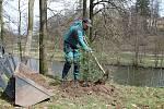 Výsadba stromků v Mertových sadech v Jindřichově Hradci.
