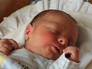 David Brus se narodil 6. února Evě a Pavlovi Brusovým z Jindřichova Hradce. Měřil 49 centimetrů a vážil 3230 gramů.