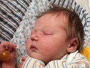 Eliška Špringerová se narodila 16. února Anně Špringerové z Županovic. Měřila 46 centimetrů a vážila 3340 gramů.