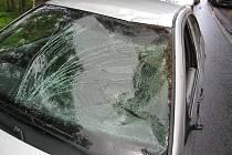 Střet auta s koněm u Horního Žďáru.