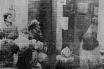 Lidé ve výloze prodejny Zverimex v dnešní Panské ulici, tehdejší Palackého, sledují videozáznam z událostí 17. listopadu v Praze.