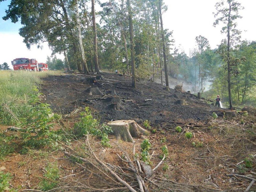 V Kamenném Malíkově na Jindřichohradecku hořel les.