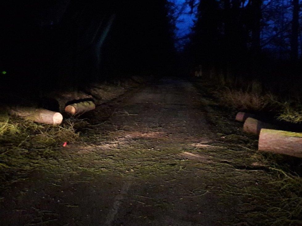 Hasiči odstraňovali padlé stromy také v Políkně u Jindřichova Hradce.