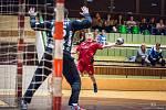 Třeboňští házenkáři se v 3. kole Českého poháru vypjali k výbornému výkonu a extraligovému Novému Veselí podlehli po boji 23:27.