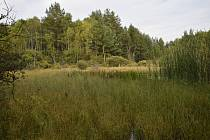 Návštěva Borkovických blat