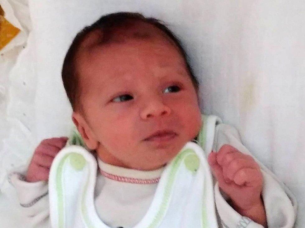David Chochol se narodil 17. července Haně Nápravníkové a Davidu Chocholovi z J. Hradce. Měřil 44 centimetrů a vážil 2280 gramů.