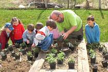 Na snímku Martin Charvát z trvalkové školky Florianus doplňuje s dětmi z Mateřské školy ve Slavonicích oblíbenou bylinkovou zahrádku, která dělá radost dětem, rodičům i všem zaměstnancům.