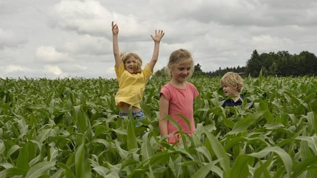 """Areál """"Léto v kukuřici"""" otevírá v sobotu 29. června."""