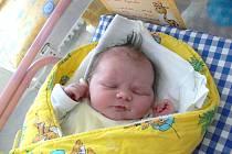 Lucie Vojanská z Nové Bystřice se narodila 27. prosince 2013 Petře Kronikové a Petrovi Vojanskému. Vážila 4060 gramů a měřila 48 centimetrů.