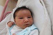 Jakub Korbel se narodil 19. dubna Ivaně Samcové a Jaroslavu Korbelovi z Kardašovy Řečice. Měřil 50 centimetrů a vážil 3950 gramů.