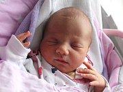Daniel Tomi se narodil 21. března Samantě Nikole a Filipu Tomiovým z Nové Včelnice. Měřil 49 centimetrů a vážil 3120 gramů.