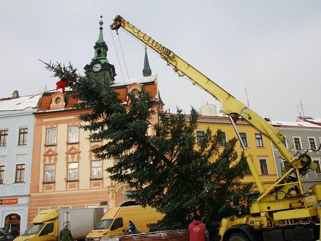 Každoročně stojí vánoční strom i na jindřichohradeckém náměstí Míru.
