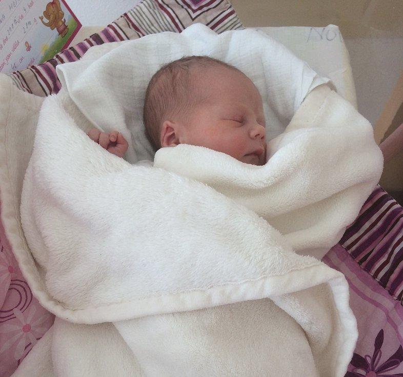 Anna Stella Heine se narodila 31. srpna Barboře Piklové a Martinu Heinemu z Jindřichova Hradce. Měřila 46 cm a vážila 2800 gramů.