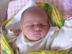 Nikol Jirková se narodila 24. ledna v 15 hodin a 45 minut rodičům Renatě a Lukášovi z Dolní Pěny. Vážila 4150 gramů a měřila 52 centimetrů.