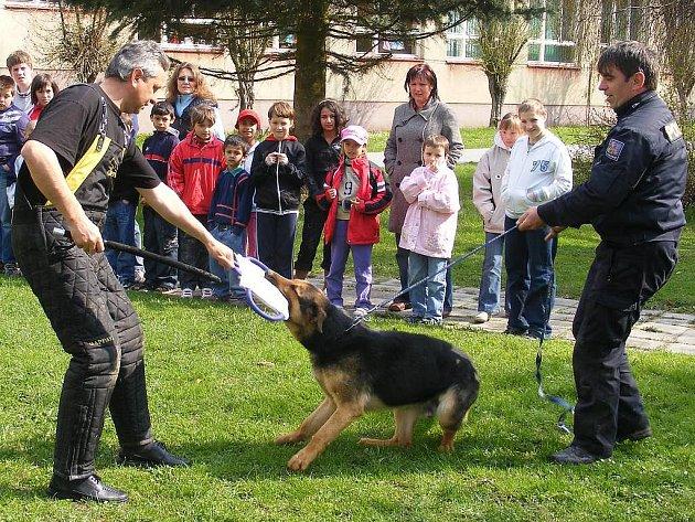 Ukázky výcviku policejních psů pro Základní, mateřskou a praktickou školu v Jindřichově Hradci.