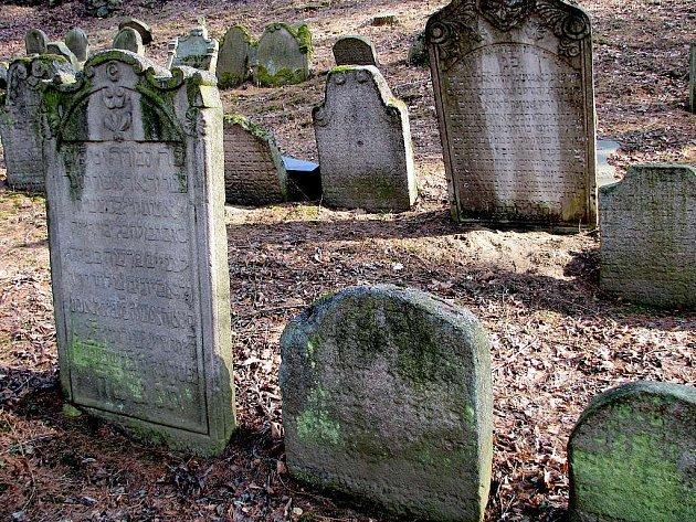 Židovský hřbitov v Jindřichově Hradci