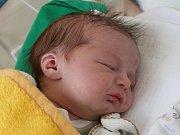 Sebastian Grabmüller se narodil 23. ledna Šárce Grabmüllerové z Jindřichova Hradce. Měřil 48 centimetrů a vážil 3550 gramů.