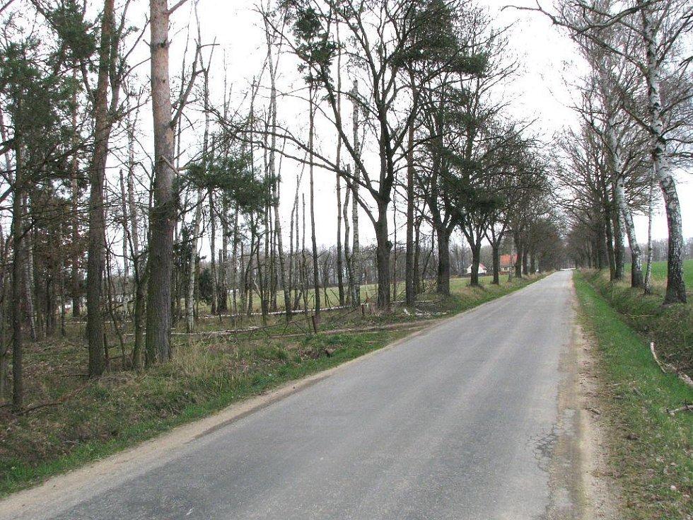 V lese po levé straně nedaleko rybářské bašty mezi Záblatím a Mazelovem bylo nalezeno tělo mrtvého muže.