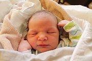 Lukáš Opl se narodil 17. listopadu Hance Landové a Lukáši Oplovi z Jindřichova Hradce. Měřil 52 centimetrů a vážil 4140 gramů.