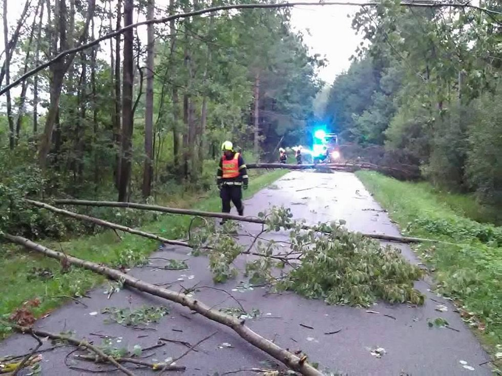 Následky bouřky na jihu Čech v noci z pátku na sobotu budou lidé ještě nějaký čas odstraňovat.Stromy v Hrdlořezech na Suchdolsku.