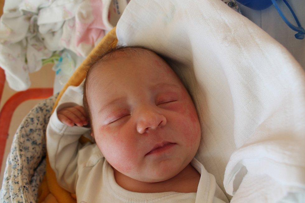 Vendula Foltová se narodila 17. února Ireně a Luďkovi Foltovým z Rapšachu. Měřila 51 centimetrů a vážila 3650 gramů.