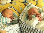 Tobiáš a Matyáš Křikavovi se narodili 15. května Andree Vlachové a Milanu Křikavovi z Kamenice nad Lipou. Tobiáš vážil 3080 gramů a Matyáš vážil 2970 gramů.