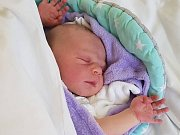 Max Winkelhofer se v jindřichohradecké porodnici narodil 25. listopadu Adrianě Prekopové a Martinu Winkelhoferovi z Českých Budějovic.