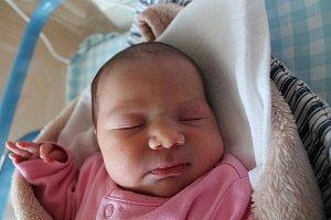Zuzana Bednářová se narodila 5. ledna Šárce Pudilové a Ladislavu Bednářovi z Frahelže. Měřila 48 centimetrů a vážila 3160 gramů.