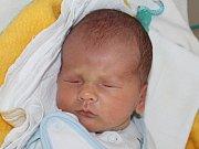 Marek Vican se narodil 7. ledna Ivaně a Jiřímu Vicanovým z Dačic. Měřil 45 centimetrů a vážil 2780 gramů.