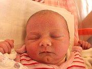 Veronika Pelcová se narodila 22. února Jitce Šimánkové a Jiřímu Pelcovi z Albeře. Měřila 47 centimetrů a vážila 3160 gramů.