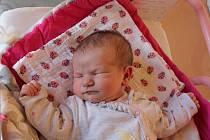 Bára Kollmannová, Jindřichův Hradec.Narodila se 4. listopadu mamince Markétě Roubíkové a tatínkovi Janu Kollmannovi. Vážila 3610 gramů.