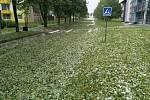 Sobotní bouřka ve Slavonicích.