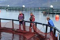 PRAXE V NORSKU. Rybářští učni se seznamovali s rybolovem v Norsku.
