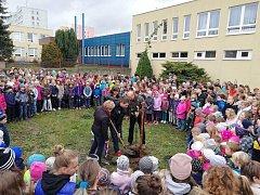 Školáci z 5. hradecké základní školy zasadili ve čtvrtek lípu na oslavu 100 let naší republiky.