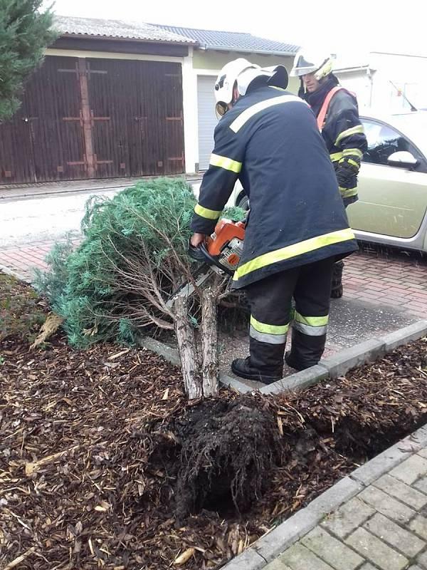 Od noci se nezastavili ani dobrovolní hasiči z Lomnice nad Lužnicí.
