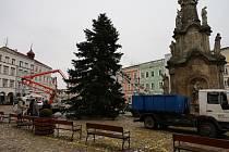 Stavění vánočního stromu v Jindřichově Hradci v pondělí 23. listopadu 2020.