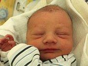 Dominik Švarc se narodil 15. března Veronice Švarcové a Pavlu Trskovi z Chlumu u Třeboně. Měřil 50 centimetrů a vážil 2860 gramů.