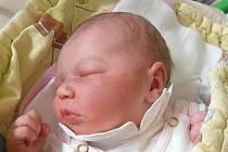 Natálie Žemličková z Domanína se narodila 19. února 2013 Jaroslavě a Dušanovi Žemličkovým. Vážila 3500 gramů.
