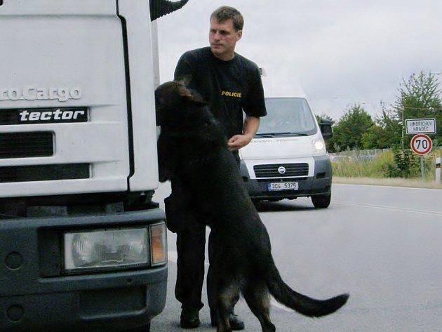 Policejní pes Cif hledá v autě drogy.