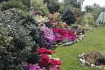 Zahrada radost pohledět.